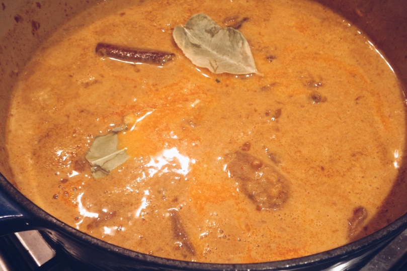 Coconut & Cinnamon Beef Curry simmering on a low heat