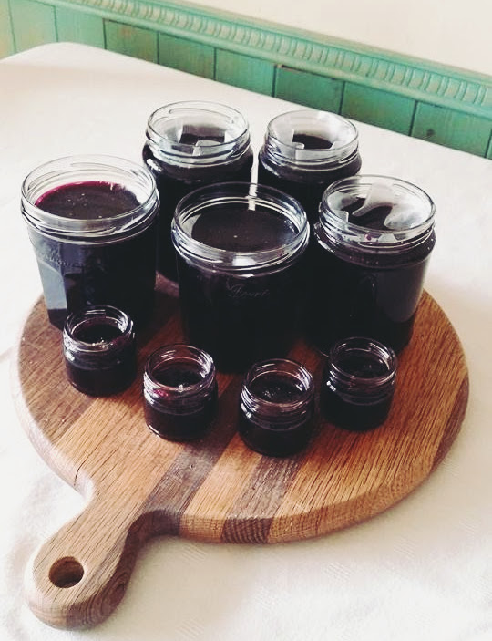 Ollie's Mulberry & Apple Jam <3